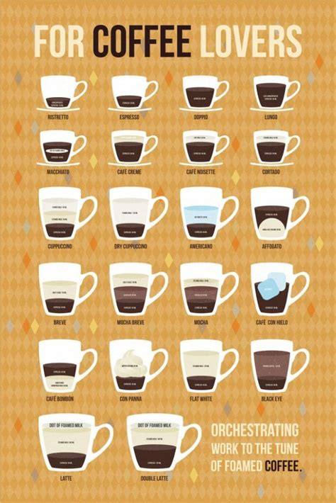 Image result for infographic types of coffee | Espresso