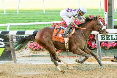 Belmont Stakes Profile: Tiz the Law | Horse Racing News