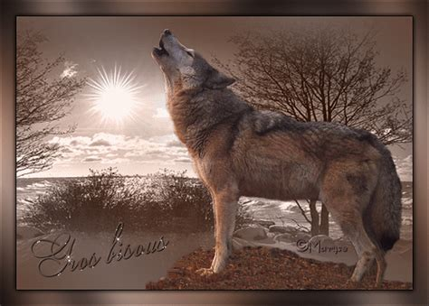 Bisous - Loup