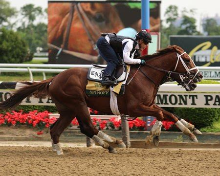 Spinoff, Intrepid Heart Log Final Belmont Stakes Works