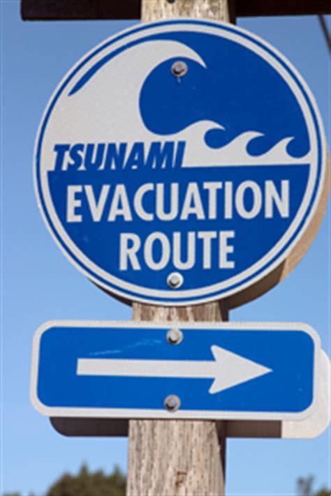 Probing Question: Could a large tsunami ever hit the